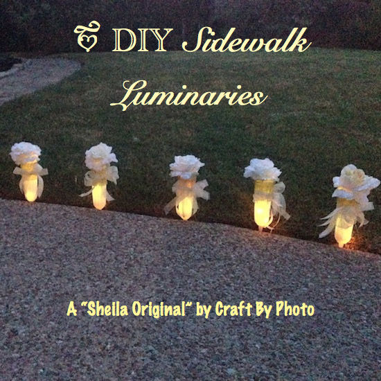DIY Sidewalk Luminaries #1